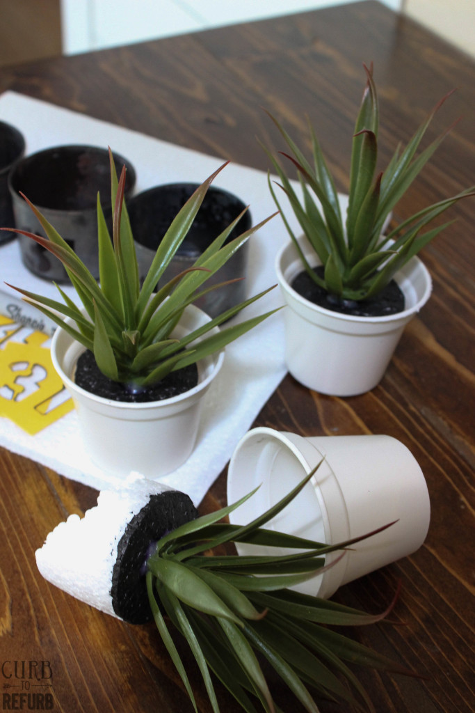 simple tin can planters
