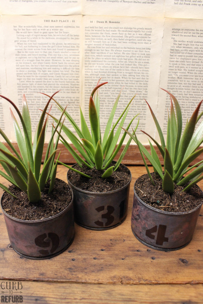 simple industrial tin can planters