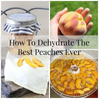 How To Dehydrate The Best Peaches Ever