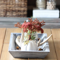 Fall Coffee Table Tray